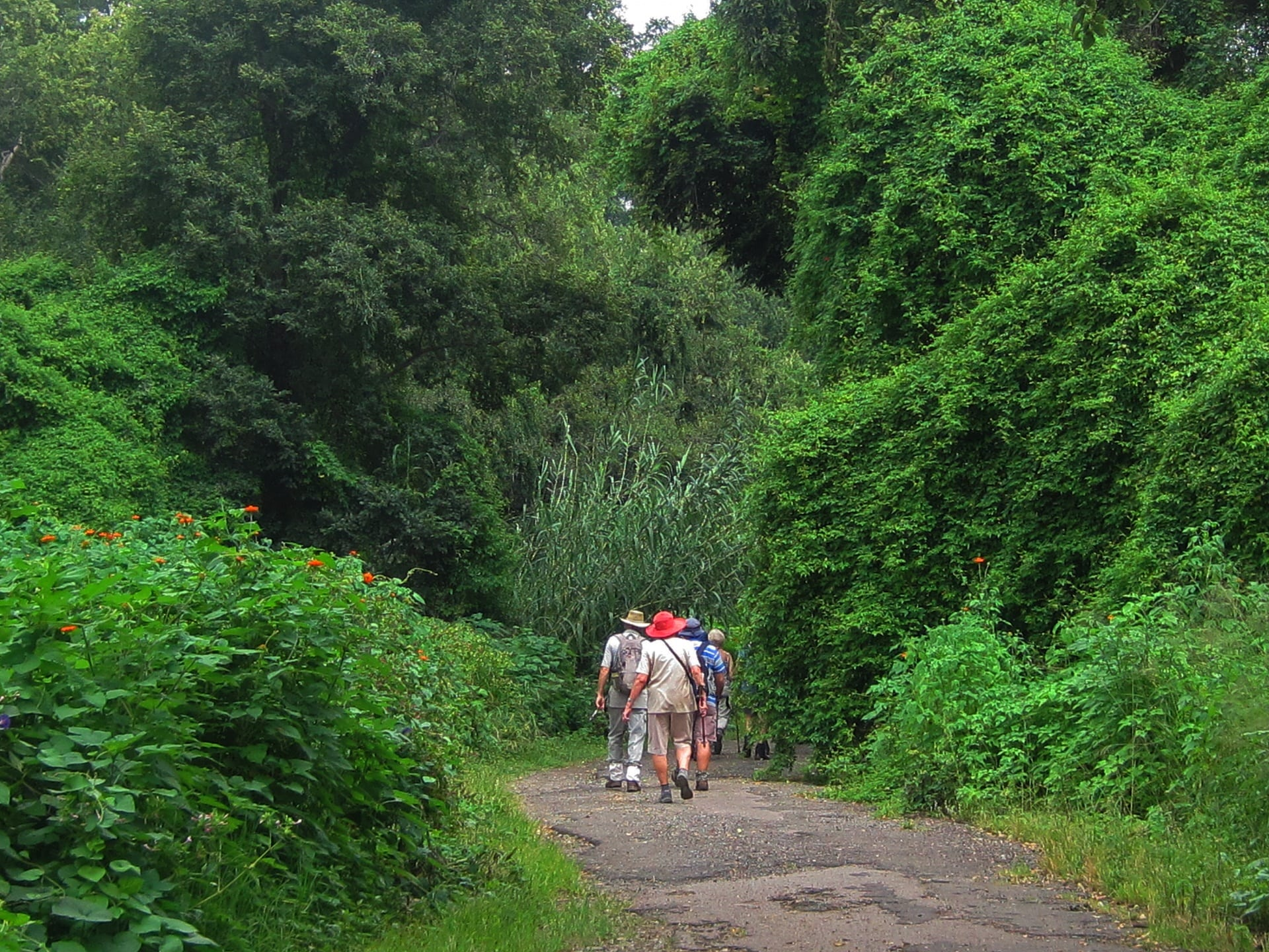 Best Hiking Trails In Brunswick County