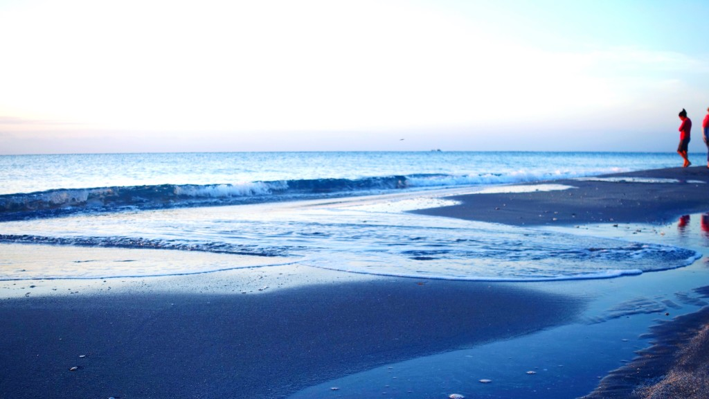 The Tidepools of the Carolina Coast